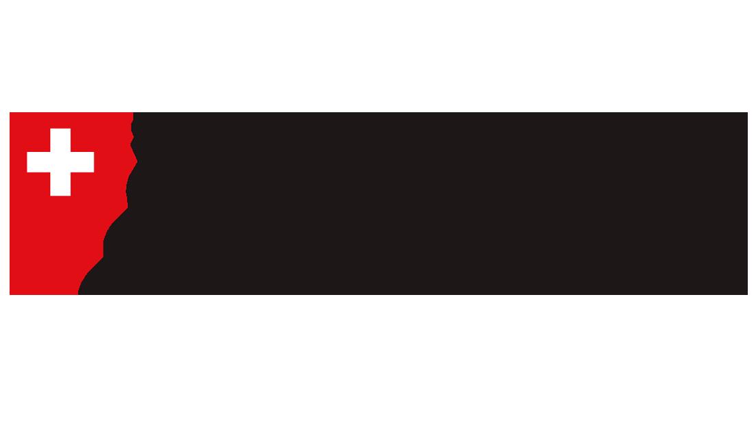 The-Library-Am-Guisanplatz-BiG